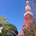 東京芝とうふ屋うかいのランチと東京タワーと