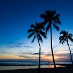 ハワイ旅行記2014 初めてのワイキキ