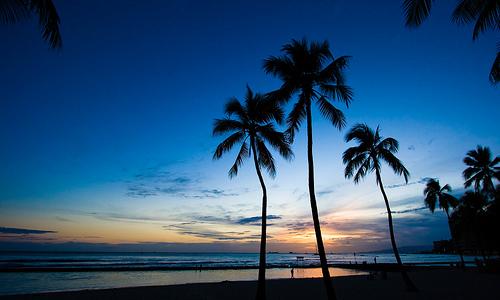 はじめてのハワイ旅行計画